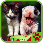 Cats And Dogs Games APK MOD (Unlimited Money) 5.20.020