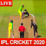 Play IPL 2020 ; Real Cricket Game APK MOD (Unlimited Money) 1.11