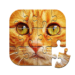 Unlimited Puzzles – free jigsaw for kids and adult   APK MOD (Unlimited Money) 2.17.1