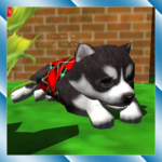 Cute Pocket Puppy 3D APK MOD (Unlimited Money) 1.2.2.3