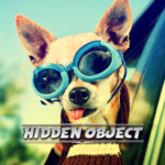 Hidden Object – Travelling Pets APK MOD (Unlimited Money) 1.0.2