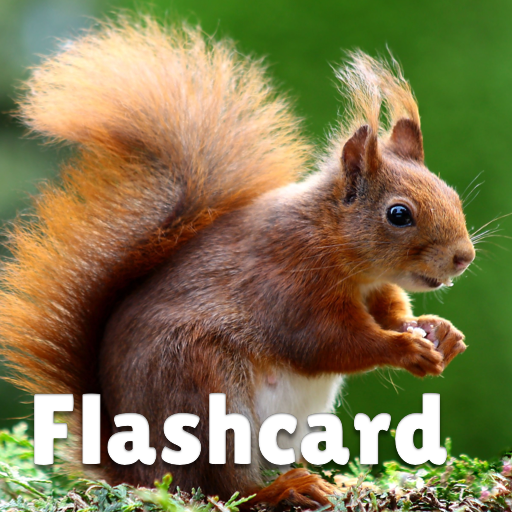 Animal flashcard & sounds for kids & toddlers APK MOD (Unlimited Money) 2020.24