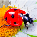 Insect Jigsaw Puzzles Game – For Kids & Adults 🐞 APK MOD (Unlimited Money) 25.2