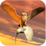 Clan of Owl APK MOD (Unlimited Money) 1.1