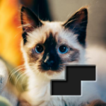 Block Square Jigsaw Puzzle APK MOD (Unlimited Money) 1.1.2