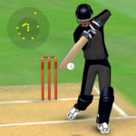 Smashing Cricket a cricket game like none other  APK MOD (Unlimited Money) 3.1.3