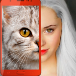 Kittens: what cat are you? prank APK MOD (Unlimited Money) 2.7