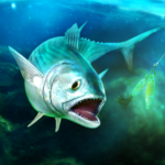 TAP SPORTS Fishing Game  APK MOD (Unlimited Money) 6.0.0