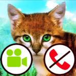 fake call video cat game APK MOD (Unlimited Money)